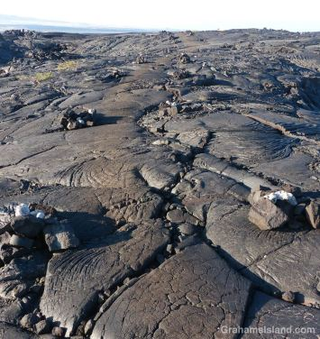 The King's Trail winds over the pahoehoe lava of Mauna Loa's 1859 eruption. The trail is marked by cairns and, in places, the worn surface of the trail stands out from the surrounding lava.