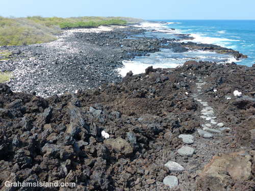 The lava bench before Mano Point