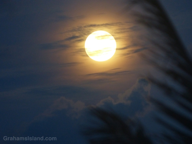 A full moon on the rise