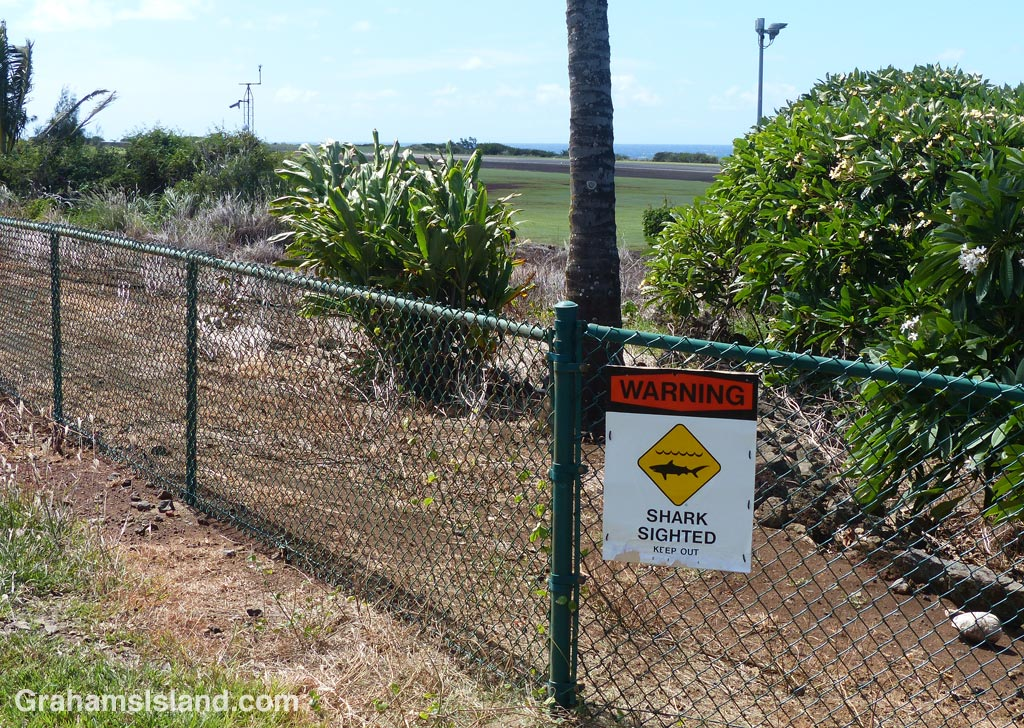 A 'shark sighted' sign on the fence at Upolu airport.