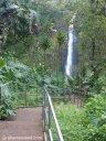 The walkway at Akaka Falls