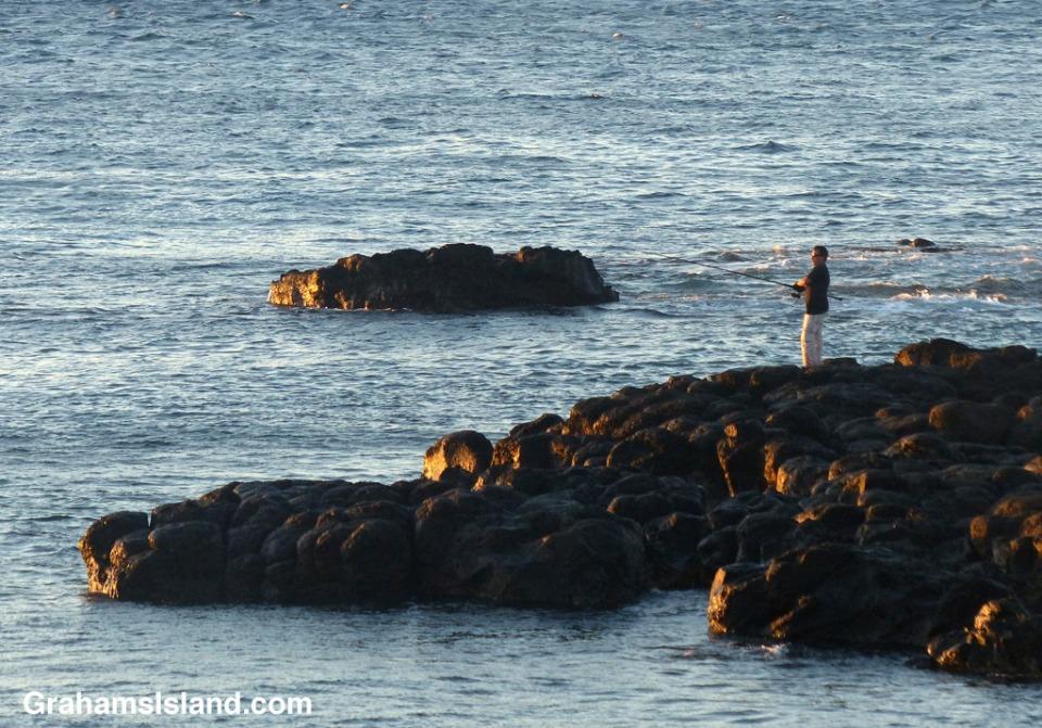 A man fishes on the Big Island coast.