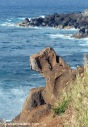 A rock on the North Kohala coast, which looks like a guard dog