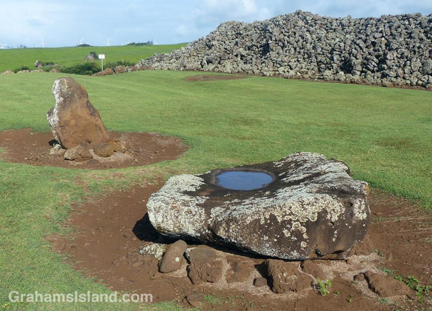 The stone at Mo'okini Heiau where flesh was stripped from bone after a sacrifice.