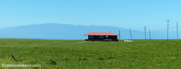 A house is moved into a pasture on the Big Island.