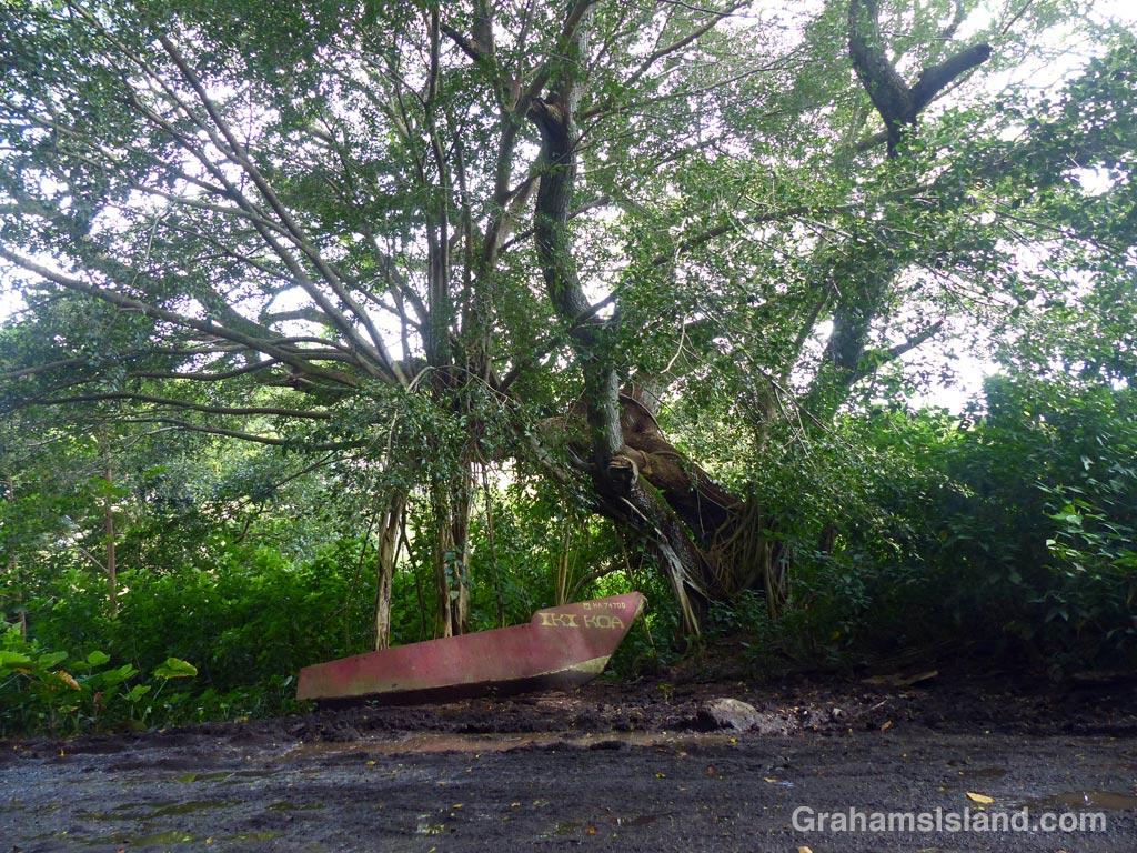 An old boat hull beside the road to Waipi'o beach.
