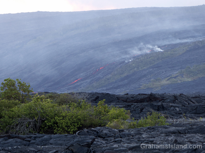 Lava from Kilauea's Pu'u O'o flow sets fire to shrubs and trees.