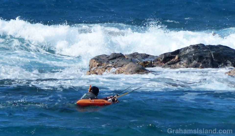 A spear fisherman eyes breaking waves as he makes his way toward shore on the rocky North Kohala coast.