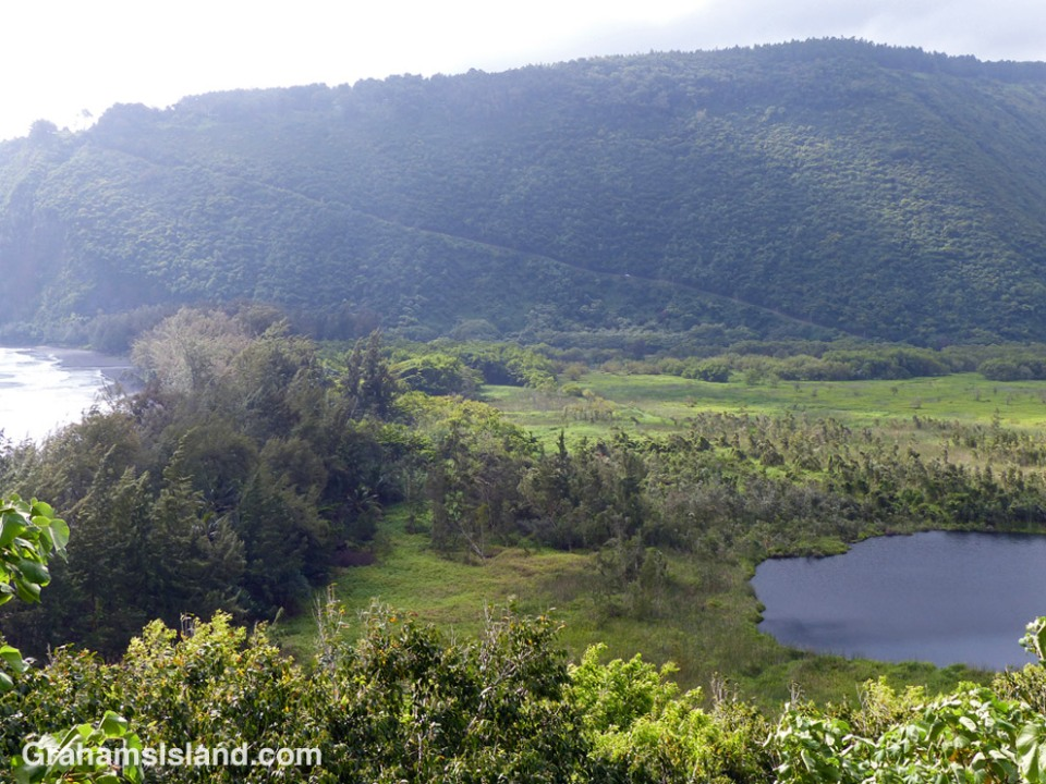 From the Muliwai Trail, a view back toward the road leading into Waipi'o Valley