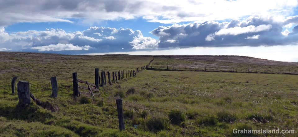 Late afternoon on the lower slopes of Mauna Kea with a fence line stretching away toward the ocean.