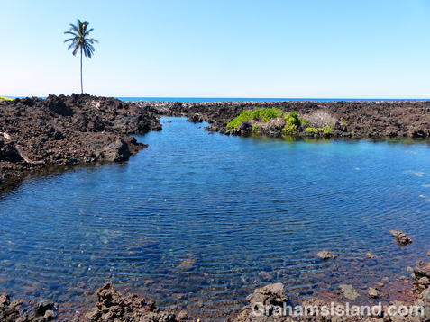 The freshwater pool behind Akahu Kaimu beach