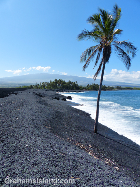 Keawaiki Beach with its lone palm tree and Hualalai volcano in the background.