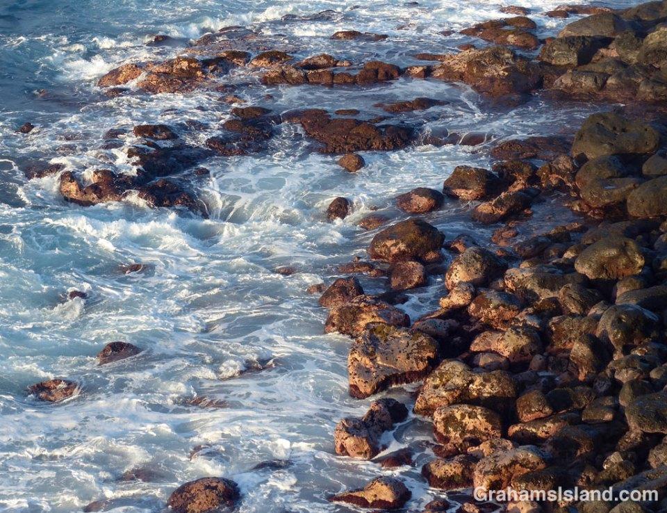 Algae covered rocks on the shore of the Big Island
