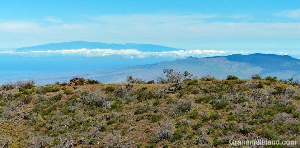 Maui and Kohala Mountain as seen from Pu'u Ahumoa on the lower slopes of Mauna Kea.