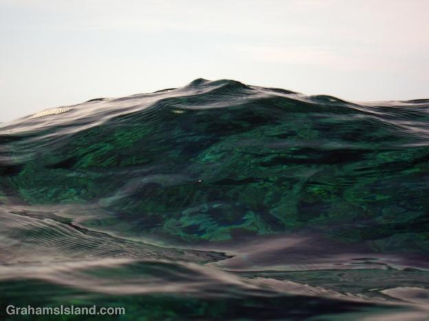 A wave looks just like a mountain