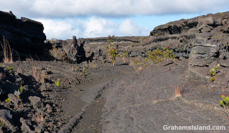 A lava channel on Napau trail.