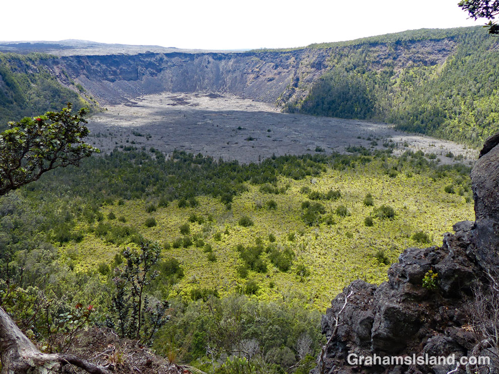 Looking down into Makaopuhi Crater.