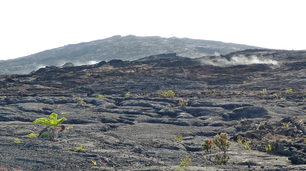 Steam vents on the eastern side of Mauna Ulu.