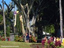 A lei is draped over the spear of the statue of King Kamehameha 1 in Kapaau