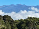 In this view of Mauna Kea from the Pu'u O'o Trail, the trees of a kipuka, clouds rolling over the saddle, and the bulk of the mountain create a layered effect.