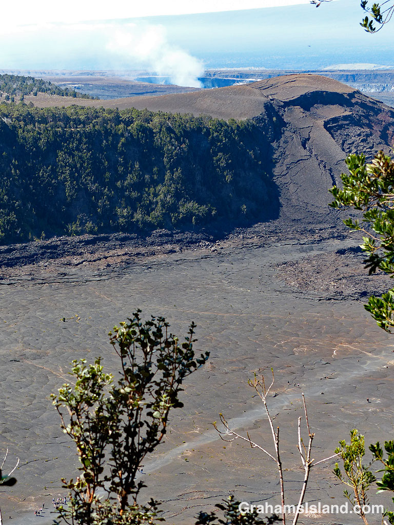 A group of people, looking very small, walk the trail across Kilauea Iki Craterfloor.