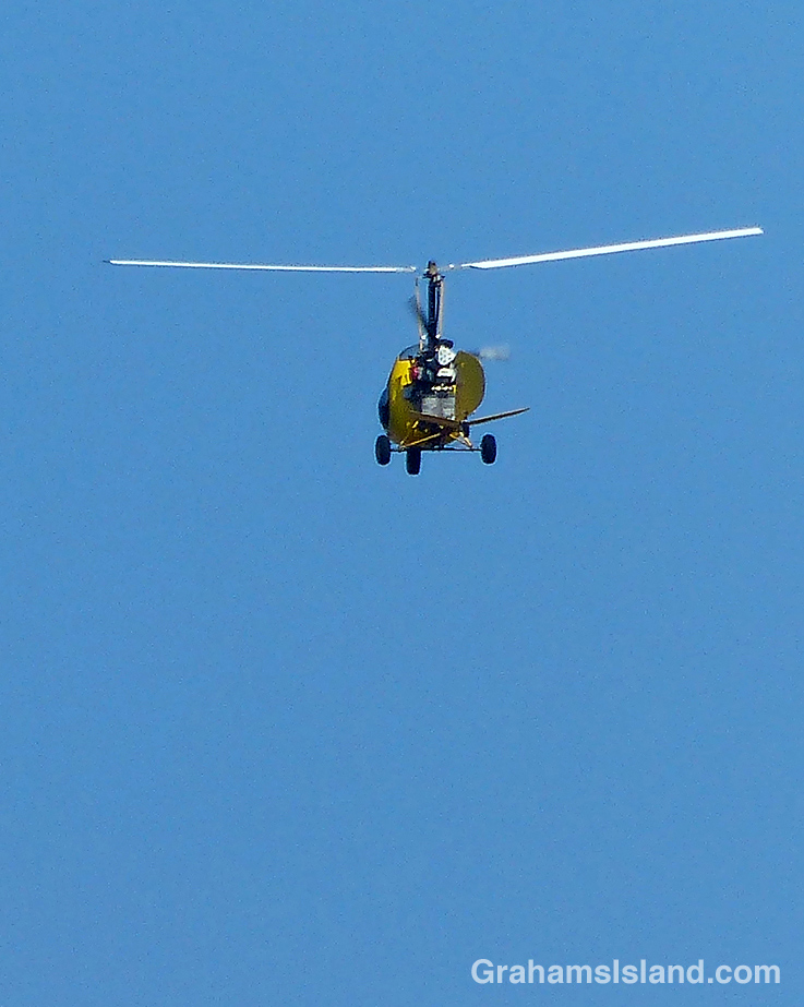 A mini-helicopter takes to the air.