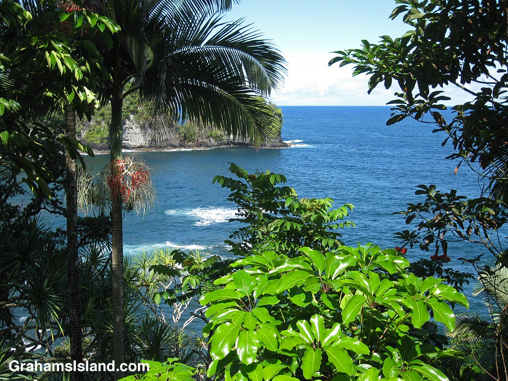 A view of the coast north of Hilo on the Big Island of Hawaii