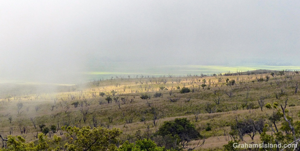 Low clouds blanket the lower slope of Mauna Kea.