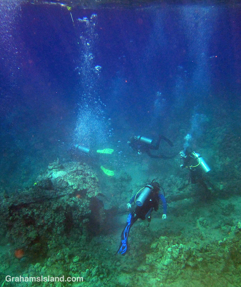 Divers in the waters off the Big Island of Hawaii.