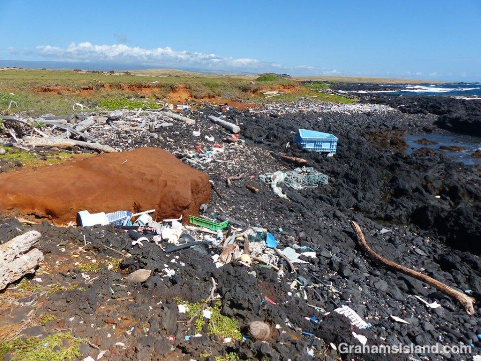 Beach debris Big Island