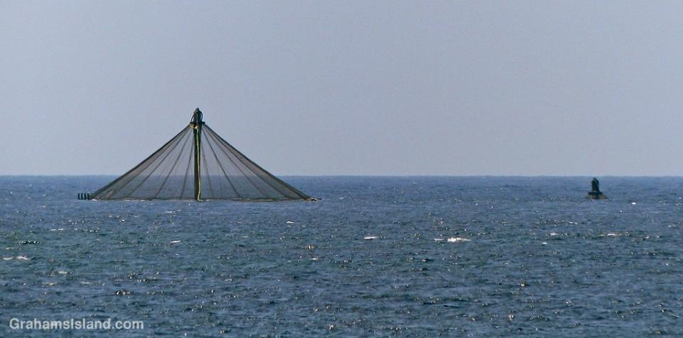 Fish farm net pens