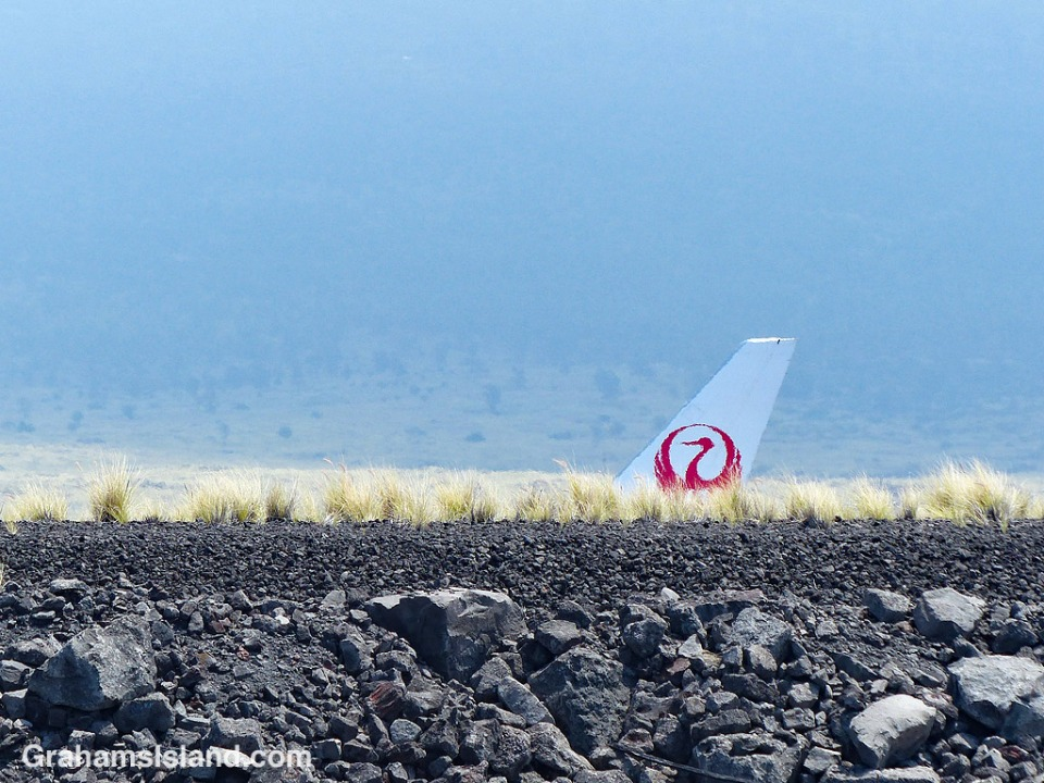 Japan Airlines plane tail