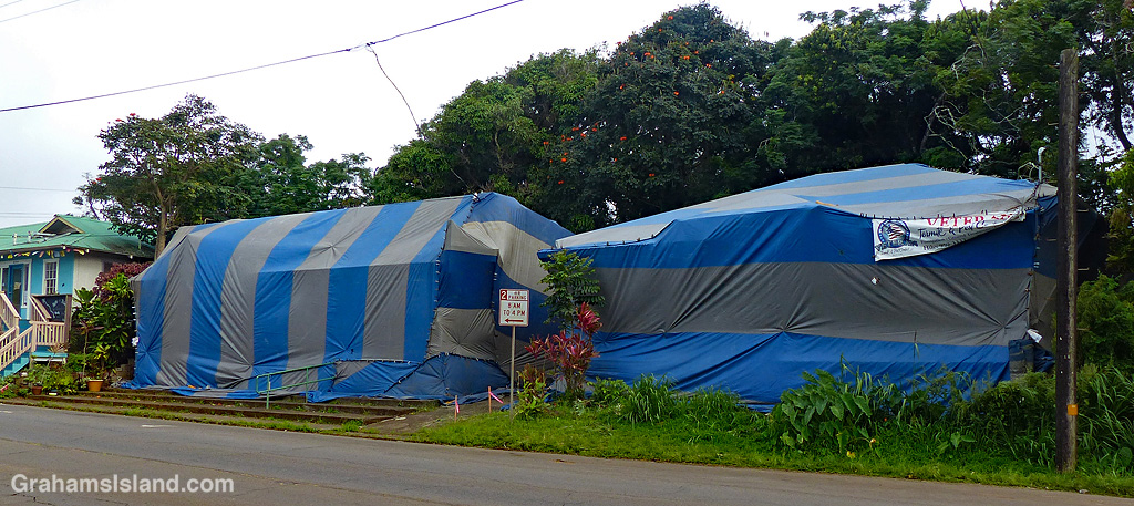 Tented for termites