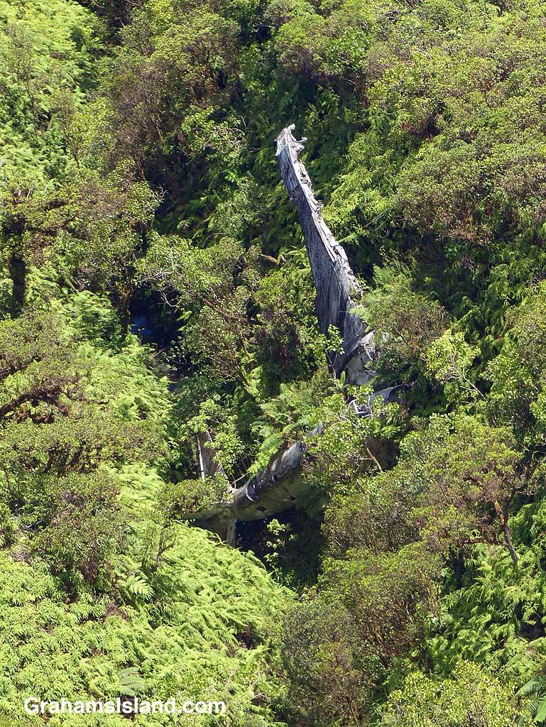 Better-Days-Wrecked Bomber in ravine
