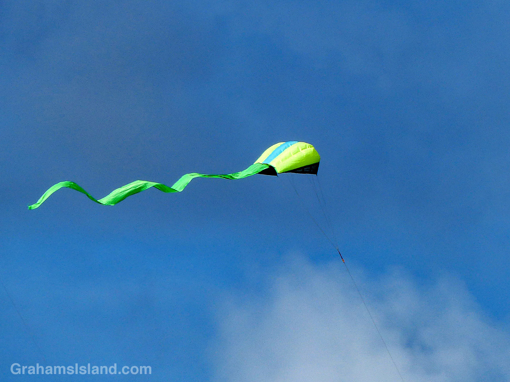 Kite with tail