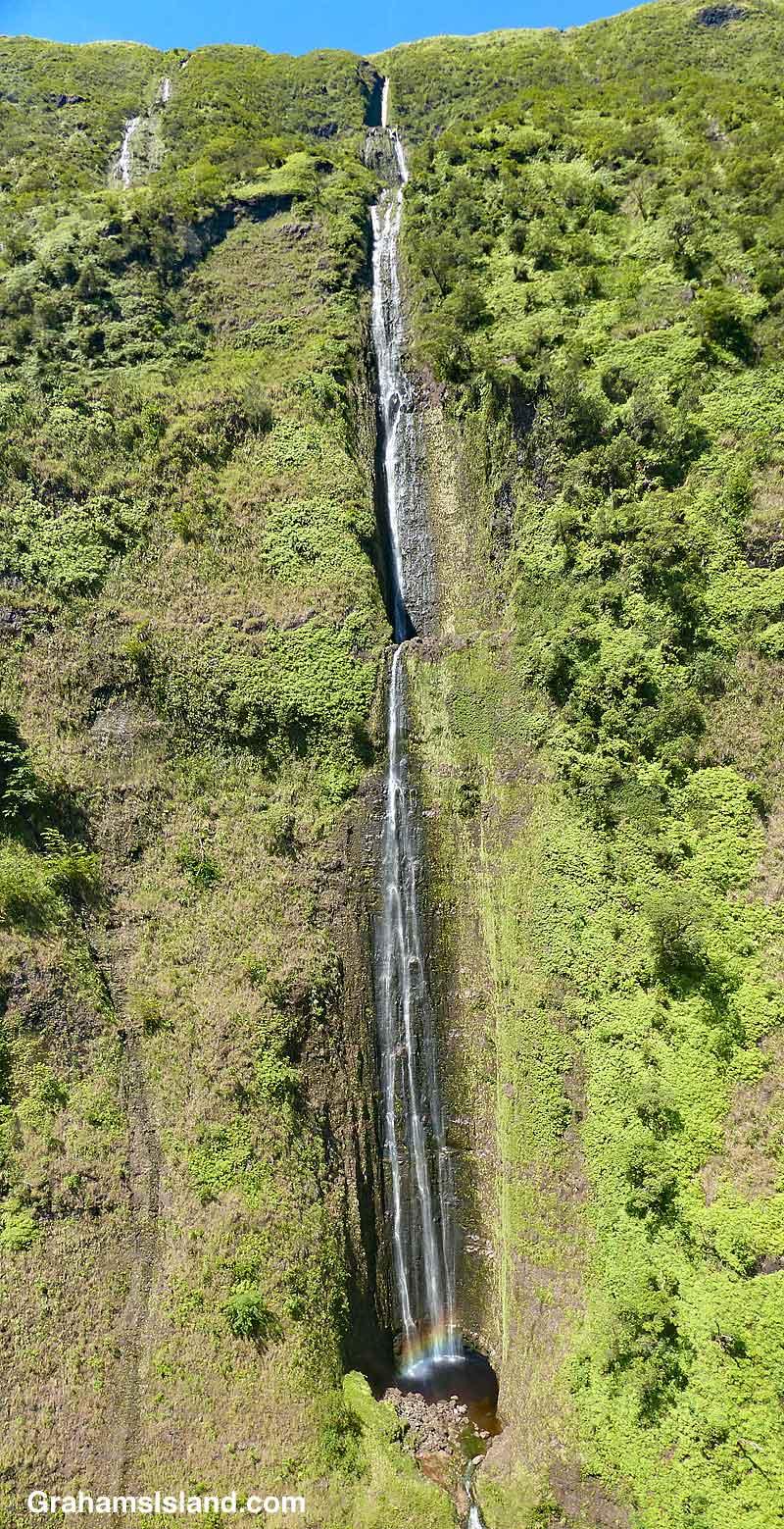 Kohala Waterfall