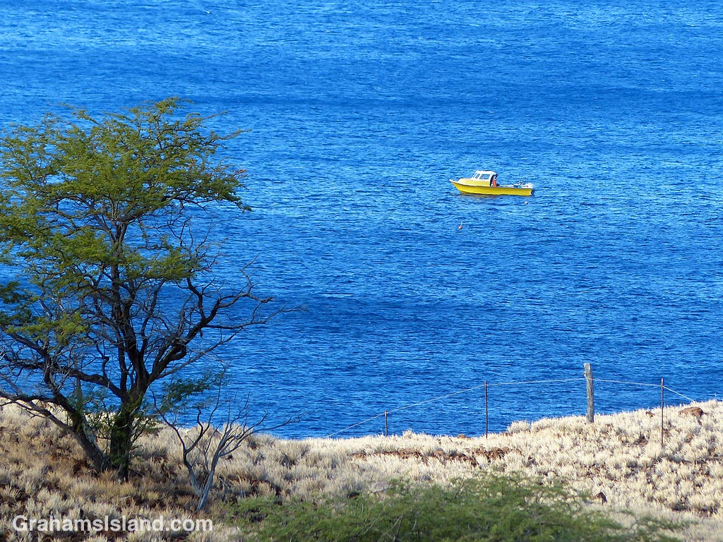 Yellow boat on blue water