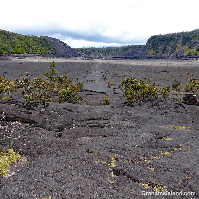 Kilauea Iki Trail in Hawaii Volcanoes National Park