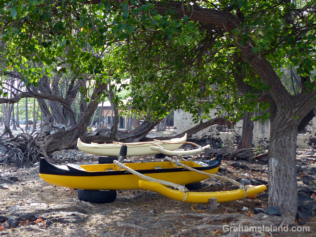 Canoes under the trees at Kiholo, Hawaii