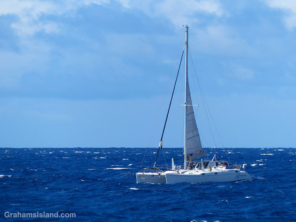 A catamaran sails off the coast of the Big Island, Hawaii