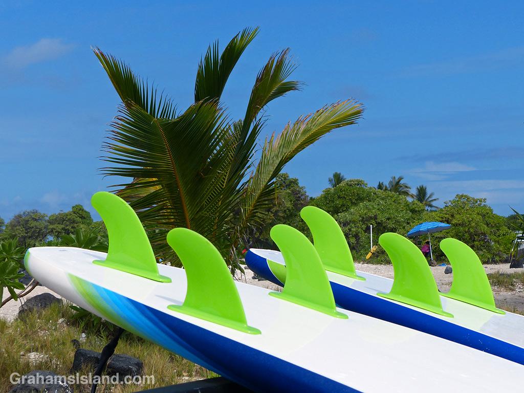 Fins on a surfboard