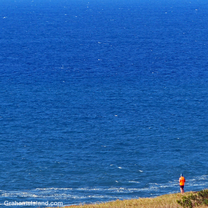 A man in a bright orange shirt looks out from the Kohala coast