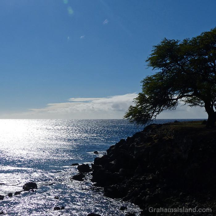 The sun shines on the Kohala coast