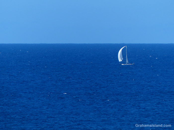 A sailboat off the coast of Hawaii