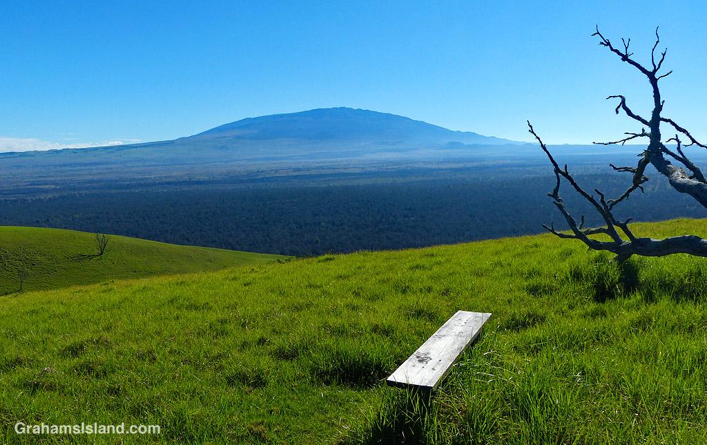 View of Mauna Kea from Pu'u Wa'awa'a bench