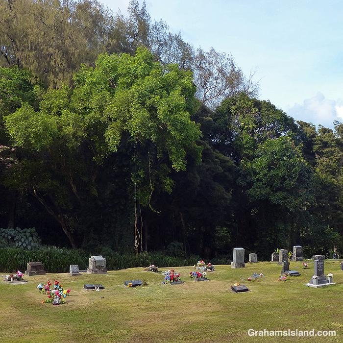 A view of Waianaia Cemetery near Kapaau, Hawaii
