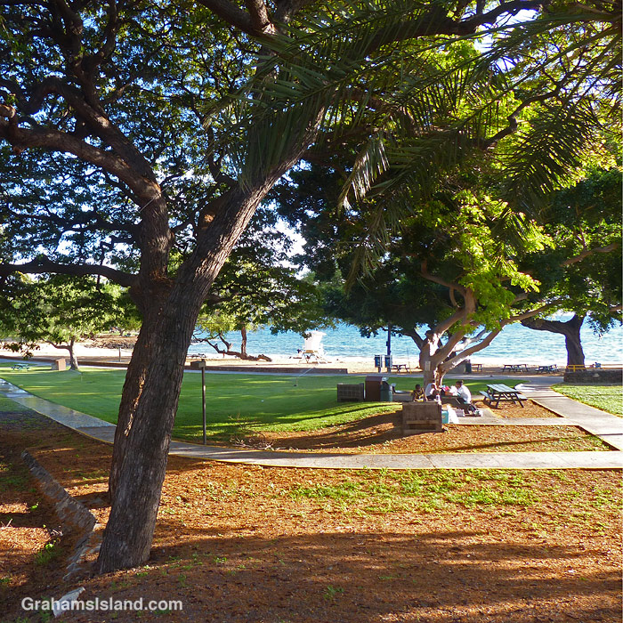 A barbecue at Spencer Beach Park, Hawaii