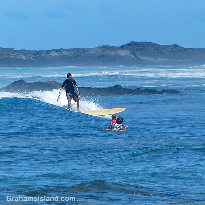 A surfers heads towards the shore at Pine Trees, Hawaii