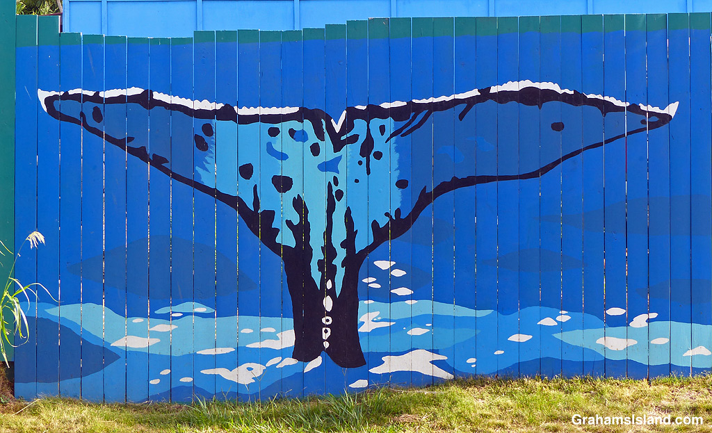 Artwork on a fence in Hawi, Hawaii