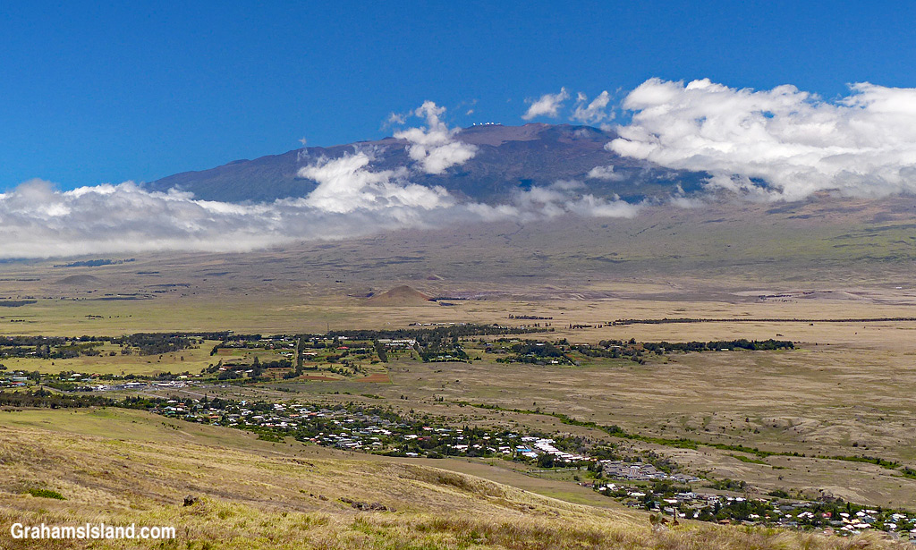 A view of Mauna Kea from Kohala Mountain Road.